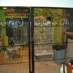 Gate to bird cage
